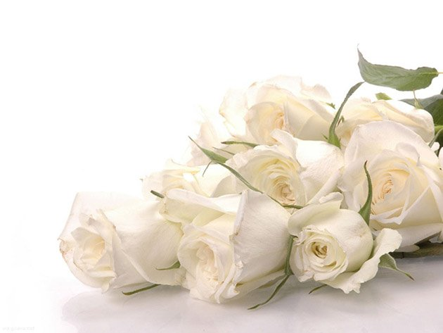 white-roses-bouquet-