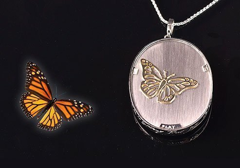 18kt Gold Butterfly pinned onto platinum Necklace
