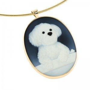 pet-portrait-memorial-maltese-dog