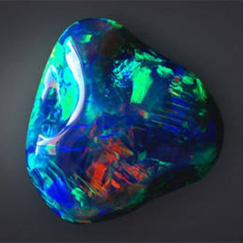 black-opal-direct-sq